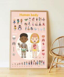 Kreatív, fejlesztő óriásplakát, 49 matricával - Az emberi test | Poppik miniart